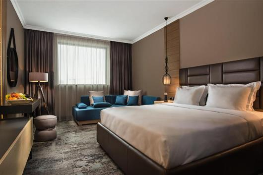 Superior Business King Room