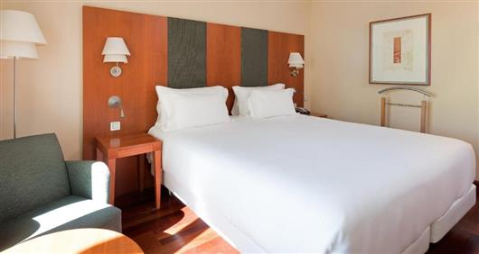 Standard Double or Twin Room with Terrace with Extra Bed