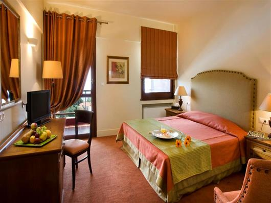 Special Offer - Executive Double Room with Mountain view
