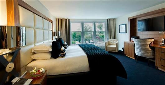 King Guest Room Plus