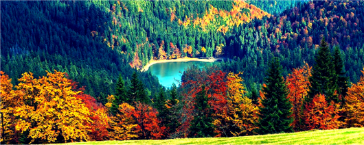 Transcarpathia - the beauty of nature and relaxation