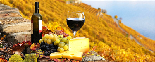 Made in Odesa and Moldova! Wine and gastronomic tour