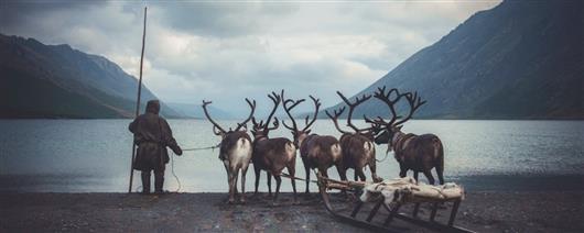 We meet autumn in the tundra