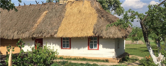 Indecent gatherings in Horodske village in the Korostyshiv region