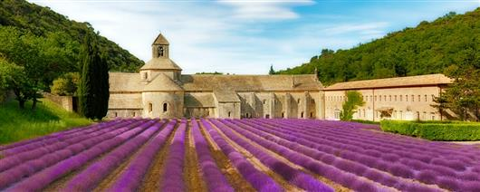 Lavender weekend in Provence