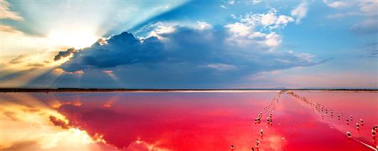 Miracles of Kherson region: from pink lake to Oleshky sands