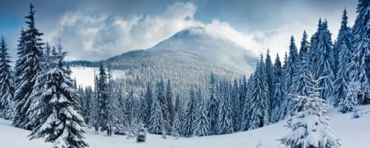 Ski Tsaghkadzor